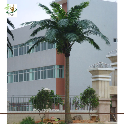 China UVG PTR008 20ft tall Wholesale artificial coconut palm tree in fiberglass trunk for Garden supplier