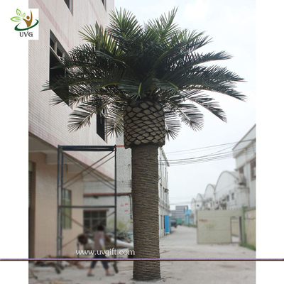 China UVG PTR013 20ft Giant fake palm tree dubai with UV leaves for outdoor beach decoration supplier