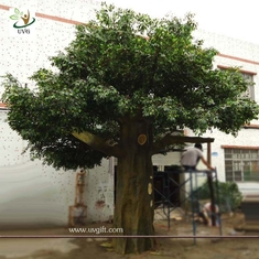 China UVG Durable and burly garden decoration plastic trees with silk artificial banyan leaves supplier