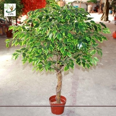 China UVG Indoor artificial miniature banyan tree in plastic leaves for home garden landscaping supplier