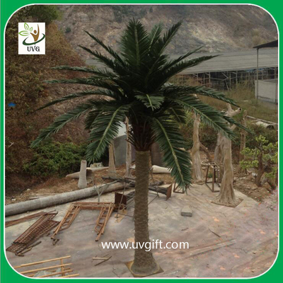 China UVG PTR029 5 meters fiberglass fake palm trees for outside amusement park decoration supplier