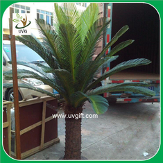 China UVG PLT06 artificial outdoor plants small potted cycas revoluta for garden decoration supplier