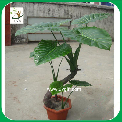 China UVG PLT11 faux plants small alocasia macrorrhizos bonsai for living room landscaping supplier