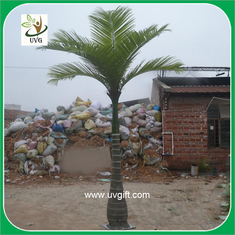 China UVG PTR023 10ft small ornamental palm tree for hotel decoration supplier