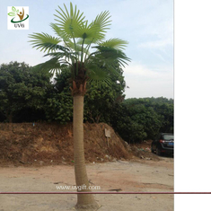 China UVG PTR038 eco friendly decorative outdoor fake palm trees for sale supplier