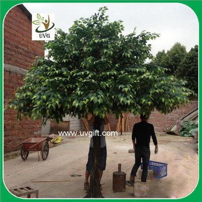 China UVG GRE045 ornamental green banyan tree artificial outdoor trees for office decoration supplier