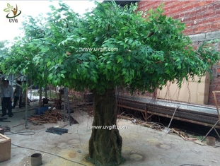 China UVG glassfiber indoor green fake banyan tree tall silk trees for shopping center decoration GRE054 supplier