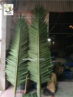 China UVG outdoor ornamental artificial palm tree branches and leaves for theme park landscaping PTR057 supplier
