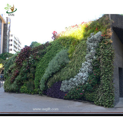 China UVG Green Vertical Wall Garden Fake Plastic Plants Grass walls for garden landscaping factory