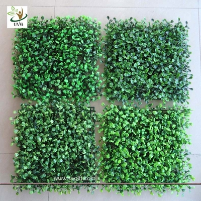 China UVG GRS02 UV protected green plastic grass panels faux boxwood for garden wall decoration factory