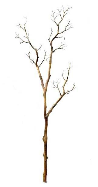 UVG DTR02 Artificial Dry Tree Branches with white color for indoor wedding