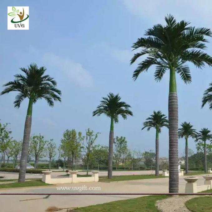 UVG evergreen artificial coconut palm trees with silk leaves for outdoor theme park landscaping PTR059